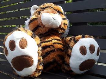 tiger talk 2